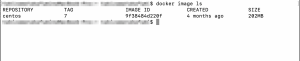 docker image ls の実行結果の例